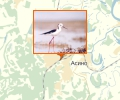«Мало-Юксинский» комплексный зоологически заказник