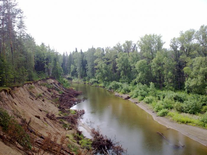 Каковы особенности рек Новосибирска?