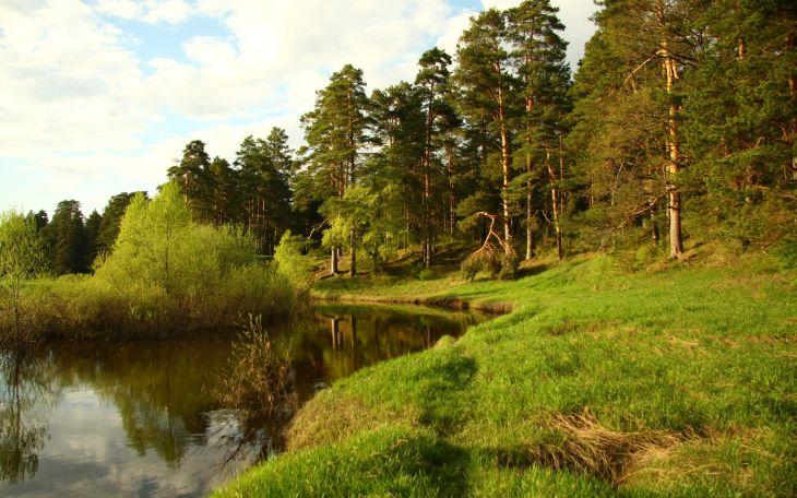 Места отдыха на природе в Новосибирске