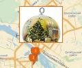 Где купить елку в Новосибирске?