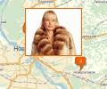 Где в Новосибирске купить шубу?