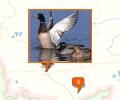 Особо охраняемые природные территории Омской области