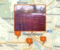 Где купить лозу в Новосибирске?