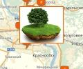 Как приватизировать земельный участок в Новосибирске?