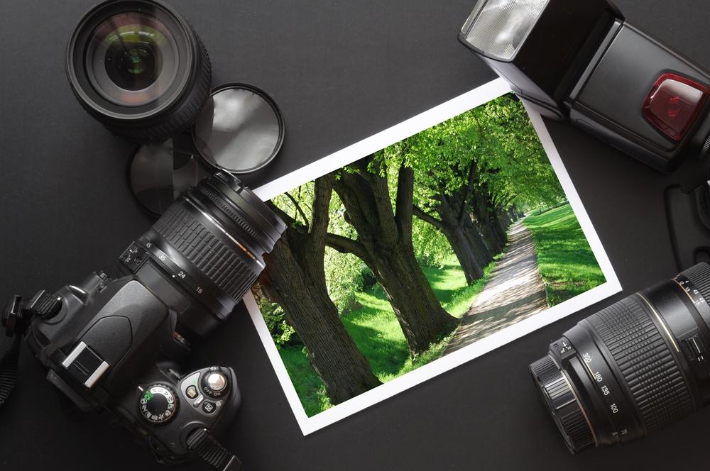 Где найти курсы фотографии в Омске?