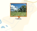 Ильмовая роща села Гавань
