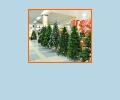 Где купить новогоднюю ёлку в Омске?